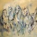 11_pferde