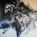 16_pferde