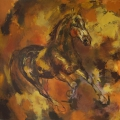 leonidas-pferde-2014.jpg